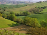 Countryside in Val d'Orcia