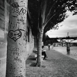 Graffiti on Tree Trunk