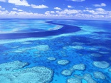 Buy Australia's Great Barrier Reef at AllPosters.com