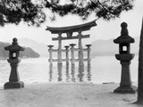 Torii Gate in Water Photographic Print