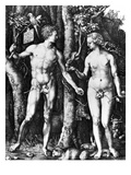 D?Rer: Adam & Eve, 1504