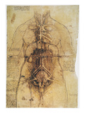 Buy Leonardo: Anatomy, C1510 at AllPosters.com