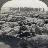 World War I: Russian Dead