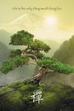 Buy Zen-Mountain at AllPosters.com
