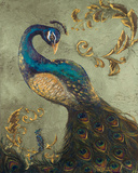 Buy Peacock on Sage II at AllPosters.com