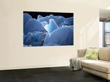 Interlocking Seracs of the Glaciar Torre Laminated Oversized Art