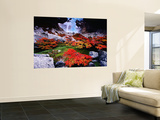 Autumnal Foliage Beneath the Glacier Piedras Blancas Laminated Oversized Art
