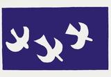 Drôles d'oiseaux sur une ligne à haute tension / For the Birds