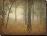 Buy Oak Grove in Fog, Study 24 at AllPosters.com