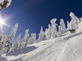 Skiing Untracked Powder at Whitefish Mountain Resort, Montana, Usa