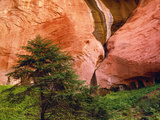 View of Double-Arch Alcove, Zion National Park, Utah, Usa