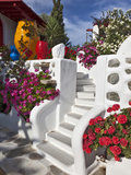 Stairs and Flowers, Chora, Mykonos, Greece Photographic Print