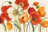 Buy Poppies Melody I at AllPosters.com