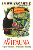 Avifauna Bird Park: Holland c.1951