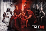 True Blood - True Colors