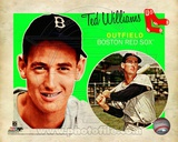 Ted Williams 2012 Studio Plus