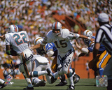 Earl Morrall & Mercury Morris Miami Dolphins with 17-0 Autographed Photo (H& Signed Collectable)