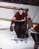 Tony Esposito Chicago Blackhawks Autographed Photo (Hand Signed Collectable)