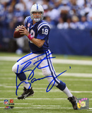 Peyton Manning Indianapolis Colts Breast Cancer Awareness Autographed Photo (H& Signed Collectable)