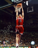 Kirk Hinrich Chicago Bulls Dunk Autographed Photo (Hand Signed Collectable)