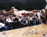 Dennis Rodman Chicago Bulls