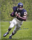 Gale Sayers Chicago Bears Autographed Photo (Hand Signed Collectable)