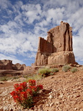 Rock Formation and Common Paintbrush (Castilleja Chromosa), Arches National Park, Utah, USA