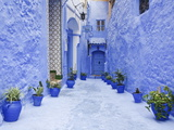 Blue Painted Alley Lined With Flower Pots Leading to Doorway, Chefchaouen, Morocco, North Africa