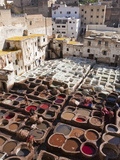 Tannery, Fez, UNESCO World Heritage Site, Morocco, North Africa, Africa