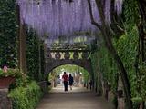 Buy The Gardens of the Villa Cimbrone in Ravello, Amalfi Coast, Campania, Italy, Europe at AllPosters.com