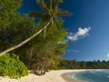 Beach of Anse Cocos, La Digue, Seychelles, Indian Ocean, Africa