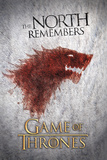 Game of Thrones-Wolf