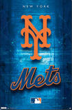 New York Mets Logo 2011