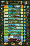 Eras of Life Geology Educational Science Chart Poster