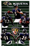 Baltimore Ravens Team Field Sports Poster Print