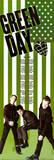Green Day American Idiot Green Door Music Poster Print Door Poster