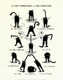 French Caractere (Le Chat Domestique) Art Print
