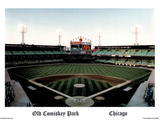 Ira Rosen Chicago White Sox Old Comiskey Park Sports Poster Print Mini Poster