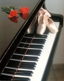 Ballet Shoes (On Piano) Art Poster Print