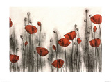 Hans Andkjaer Red Poppies Art Print Poster