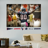 Andre Johnson Celebration Mural
