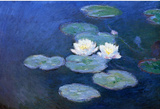 Claude Monet Water-Lilies 7 Art Print Poster