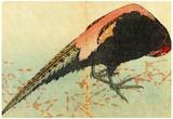 Katsushika Hokusai Pheasant on the Snow Art Poster Print