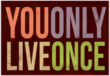 You Only Live Once Art Print Poster Poster