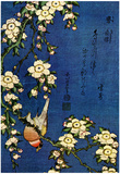 Katsushika Hokusai Bullfinch and Drooping Cherry Art Poster Print