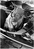 Dog in Motorcycle Sidecar Close-Up Archival Photo Poster