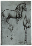 Buy Leonardo da Vinci (Horse trials) Art Poster Print at AllPosters.com