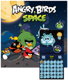 Angry Birds Space -2013 Calendar