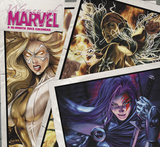 Women of Marvel - 2013 Wall Calendar Calendars