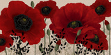 Buy Red Poppies at AllPosters.com